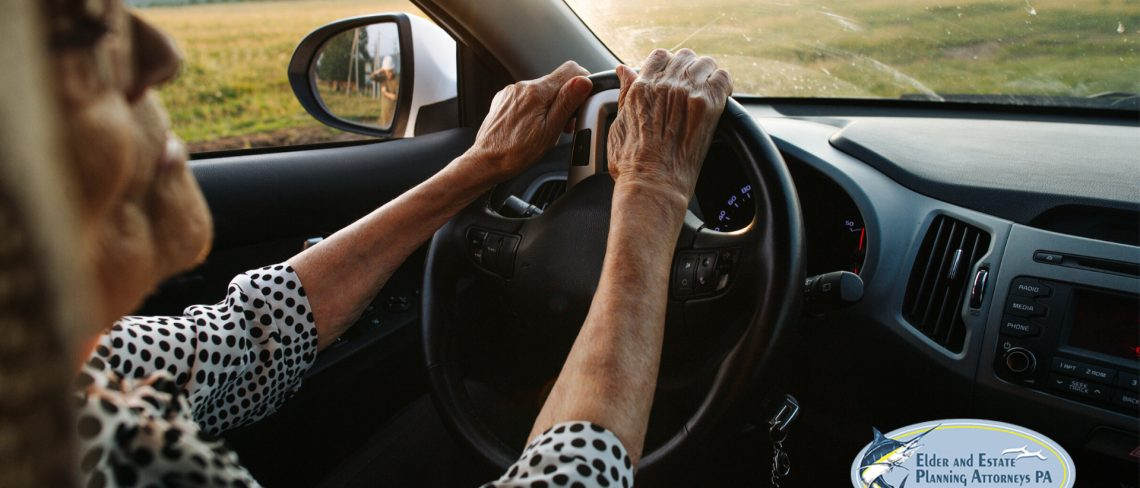 Mature woman behind the wheel driving - elder care